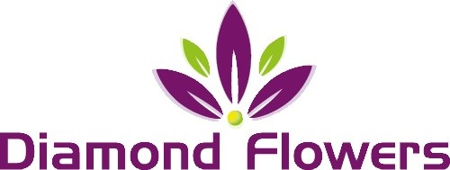Diamond Flowers V.O.F. Logo